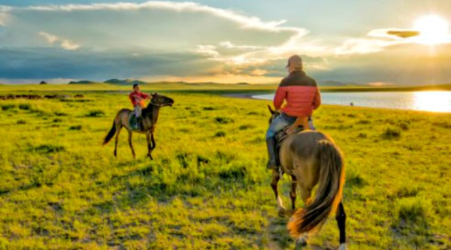 Great Mongolia Horses